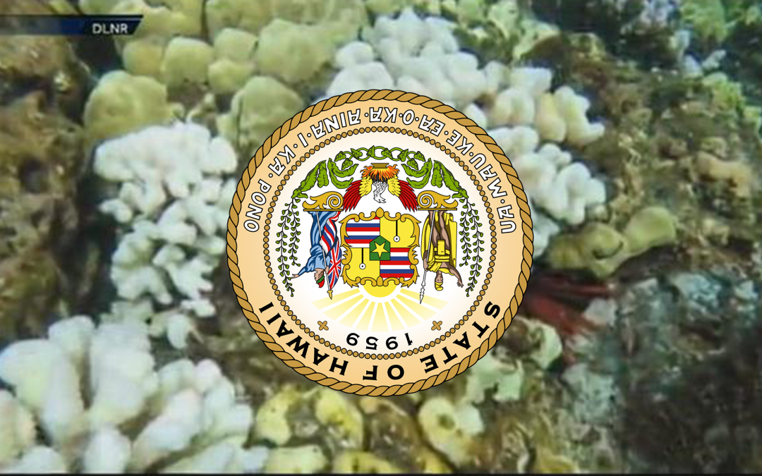 HAWAII'S OXYBENZONE BILL IS DEAD FOR 2017